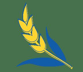 Icone Solidarité des Lions Clubs du Nord de la France